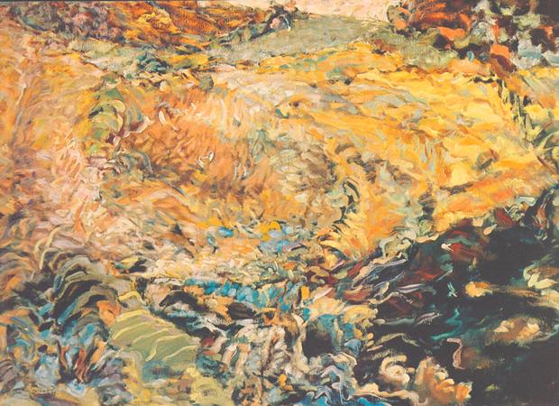 Terre ardente, 1982
